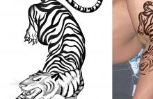 Adam Levine Tiger Tattoo Close Up | www.pixshark.com ...